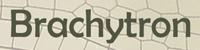 Brachytron