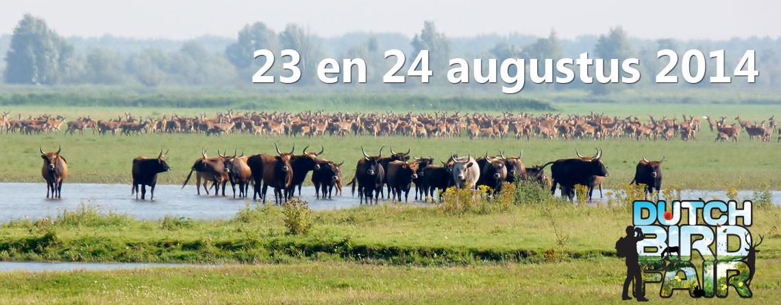 De Dutch Bird Fair…, hét natuurfestival!