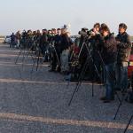 Een nieuwe website voor Vogel- en Natuurwacht Zuid-Flevoland