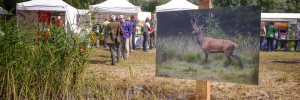 Foto's Dutch Bird Fair 2014